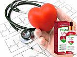 PhytoLife(Фитолайф) – средство для борьбы с гипертонией, фото 2