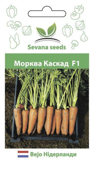 Семена моркови Каскад F1 1000 семян ( 1,448 грамм ) Bejon Zaden