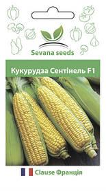 Семена кукурузы Сентинель F1 50 шт. Clause