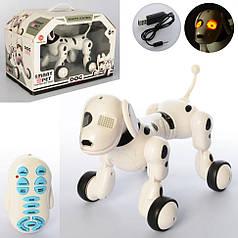 Собака 6013-3