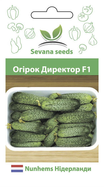Семена огурцов Директор F1 10 шт. самоопыляемый Nunhems