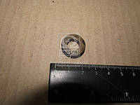 Кольцо упорное тарельчатой пружины КПП (производство ЯМЗ) 238-1601304