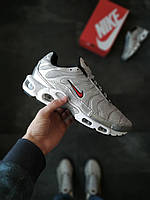 Мужские кроссовки  Nike Air Max Plus TN Серые, фото 1