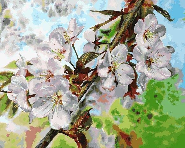 VP1313 Картина-раскраска по номерам Цвет вишни