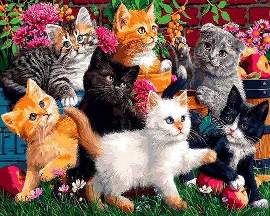 VP1319 Картина-раскраска по номерам Котята в саду, фото 2