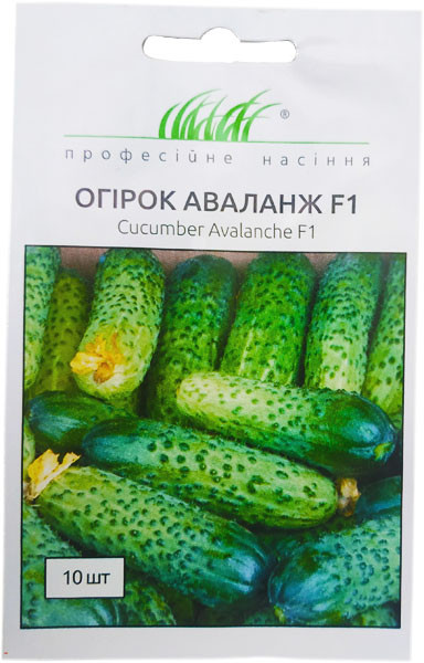 Семена огурцов Аваланж  F1 10 шт. самоопыляемый NongWoo Bio