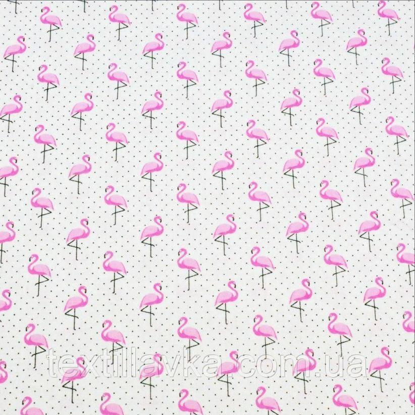 Ткань хлопок фламинго в горошек