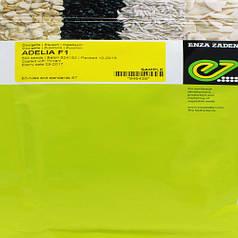 Семена кабачка Аделия F1, 500 семян — ранний гибрид, кустовой, светлый Enza Zaden