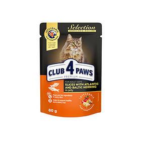 Клуб 4 Лапы влажный корм с селедкой и салакой в желе 80г (Club 4 Paws Premium Selection)