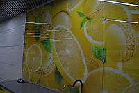 Отделка стен стеклом Скинали, фото 1