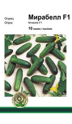 Мирабелла F1 семена огурца, 10 семян — огурец партенокарпический, Seminis, фото 2