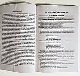 Посібник для вчителя НУШ. ГПД: інтегровані тематичні дні. 2–4 класи (Основа), фото 4