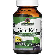 """Центелла азиатская Nature's Answer """"Gotu Kola"""" 950 мг (90 капсул)"""