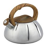 Чайник зі свистком з нержавіючої сталі Benson BN-704 (3 л), нейлонова ручка, індукція | свистить чайник, фото 1