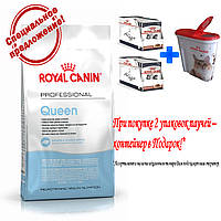 Royal Canin Queen Сухой корм для кошек с первых дней течки и до окончания лактации 4 кг