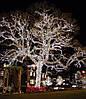 Гирлянда 300LED (СП) 25м Белый (RD-7145), Новогодняя бахрама, Светодиодная гирлянда, Уличная гирлянда
