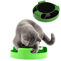 Интерактивная игра для котов с точилкой для когтей Trixie Catch The Mouse | кот и мышь | когтеточка, фото 1