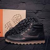 Мужские зимние кожаные ботинки Levis Expensive Black, фото 6