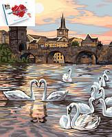 """Картина по номерам """" Лебеди Праги"""" 40 см* 50 см в подарочной упаковке (KpN-01-04U)"""