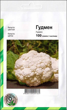 Гудмен семена капусты, 100 семян — цветная, раняя,  Bejo, фото 2