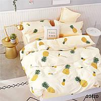 20120 постельное белье Вилюта ранфорс двуспальный