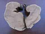 Слеб абрикоси, фото 3