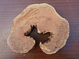 Слэб абрикоса, фото 4