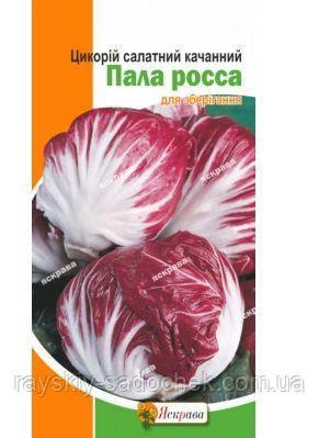 Цикорій качанний Пала Росса 1 гр