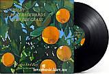 Вінілова платівка LANA DEL REY Violet bent backwards over the grass (2020) Vinyl (LP Record), фото 2