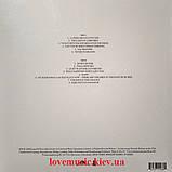 Вінілова платівка LANA DEL REY Violet bent backwards over the grass (2020) Vinyl (LP Record), фото 3