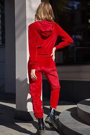 Женский красный велюровый костюм, фото 3