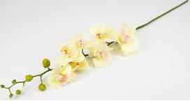 Квітка Орхідея 90 см силікон 034F white (білий)