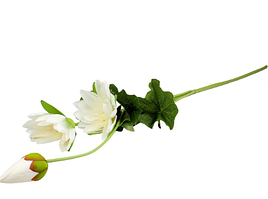 """Гілка """"Лотос"""" 3 квітки"""