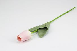 Тюльпан 56см 005FR-2/pink (ніжно-рожевий)
