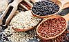 КРІП, зерно насіння кропу органічного для пророщування 20 грам