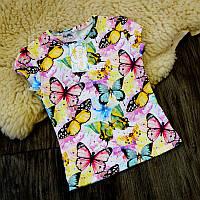 Детская футболка разноцветные бабочки Five Stars KD0423-128p