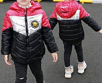 Куртка детская демисезонная Red Dog