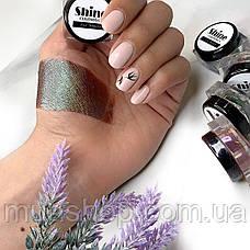 Пигмент для макияжа Shine Cosmetics №2, фото 2