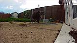 Камера видеонаблюдения D-Link  DCS-2800LH-EU mydlink Pro Wire-Free, фото 5