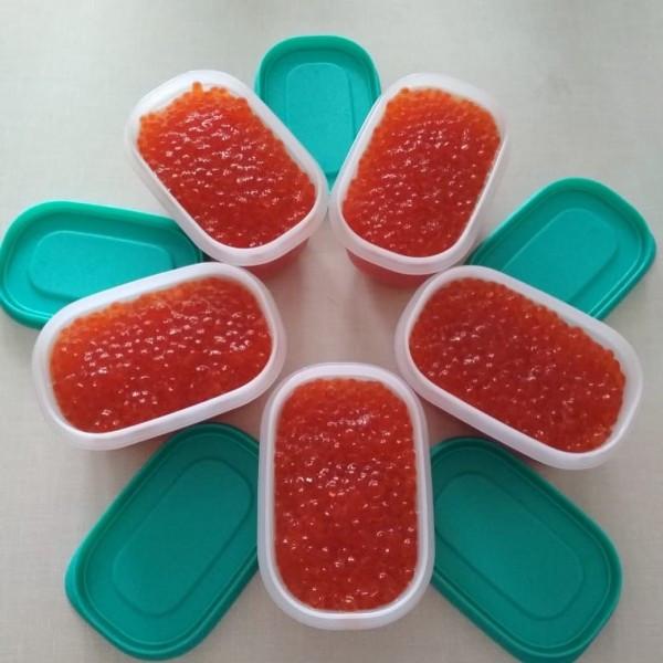 Охлаждающие лотки Мини 170 мл (2 шт.) Tupperware