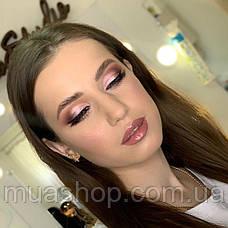 Пигмент для макияжа Shine Cosmetics №12, фото 2