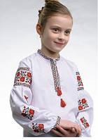 Вишиванка для дівчинки VDML18