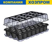 Парник для выращивания рассады на 33 ячейки 278*425 мм. Кассета для рассады 52*52*65 мм, фото 1