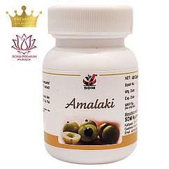 Амалакі капсули (Amalaki Capsules, SDM), 40 капсул - Аюрведа преміум якості