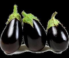 Семена баклажанов фасованные