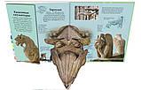 Книга Собор Парижской Богоматери в 3D. История и основные события от Средневековья до наших дней, фото 6