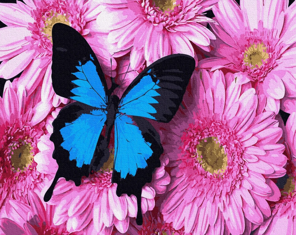 "Картина по номерам. Brushme ""Бабочка на розовых хризантемах"" GX34056"