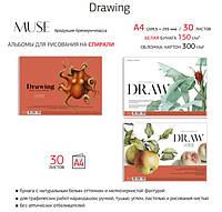 Альбом для ескізів скетчбук №306 A4 Drawing Muse, на спиралі 21х29,5см 30л, білий папір 150г/м2 Школярик