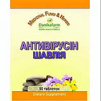 Антивирусин-Шалфей 90 таб.