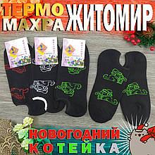 """Підслідники жіночі з махрою """"Кіт САЙМОН"""", Житомир, КРАСА, р23-25, чорні, 20026059"""